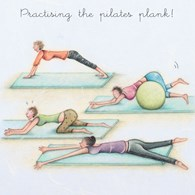 LL200 - Practising the pilates plank